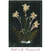 AustraliA - Tascam Love